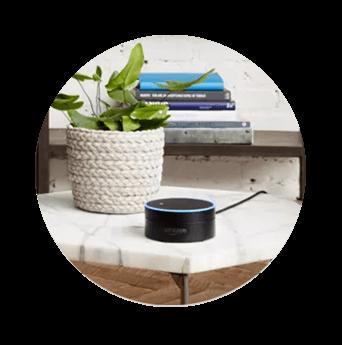 DISH Hands Free TV - Control Your TV with Amazon Alexa - Big Rapids, Michigan - Rasmussen Satellite TV - DISH Authorized Retailer